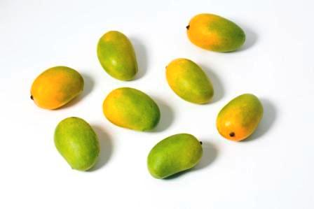 Best Mangoes in the World; India
