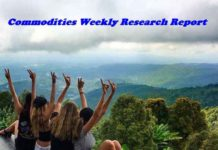 Weekly Research Report