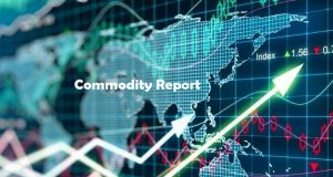 Best Commodities Fund
